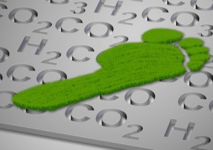 Carbon footprint in grass