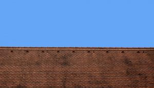 roof-1313539_960_720
