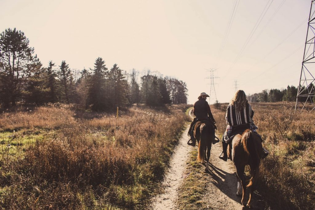A couple riding horses down a pathway in angled sunlight
